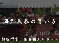 オルフェーヴル凱旋門賞バナー2.jpg