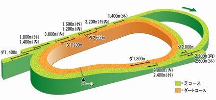 阪神コース立体図