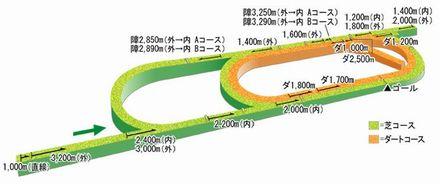 新潟コース立体図