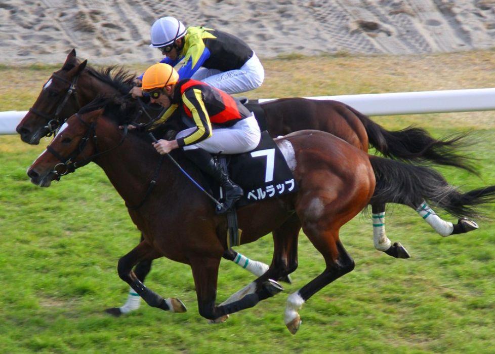 皐月賞2015予想オッズ、展望。どの馬がボーダー?
