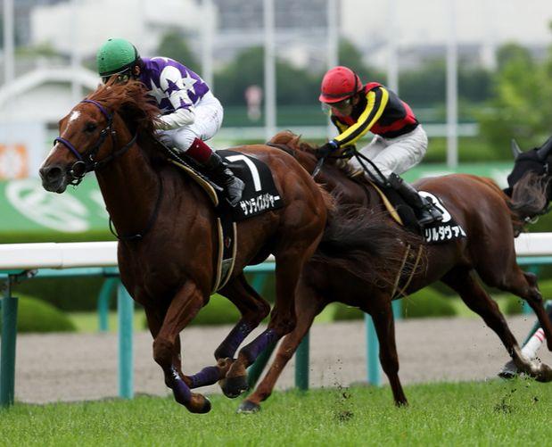 安田記念2015は雨?重馬場適正を考えておく。