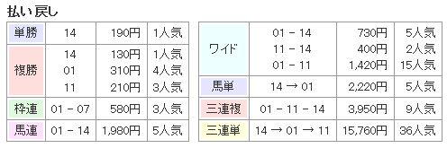 日本ダービー2015払い戻し
