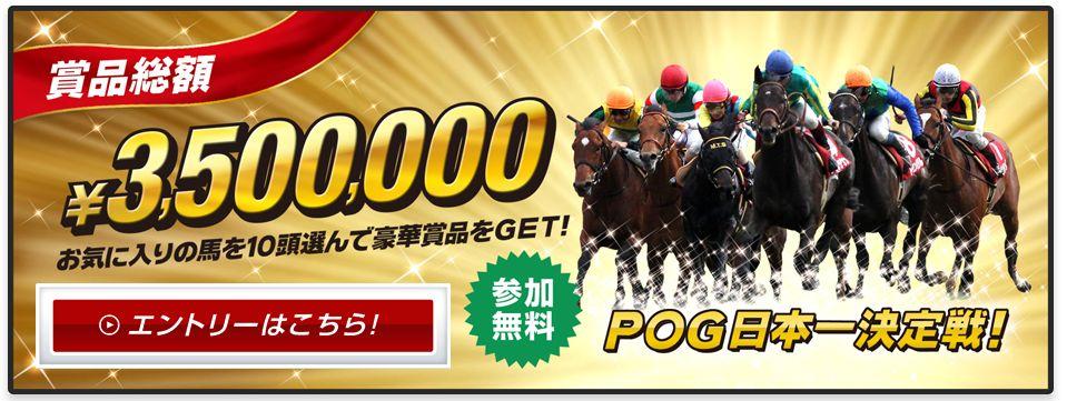 POG2015~2016!浅次郎の指名馬はこの馬だ!