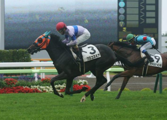 札幌2歳S2015予想!重馬場適正高そうなクロコスミア