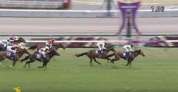 高松宮記念2016ゴール前