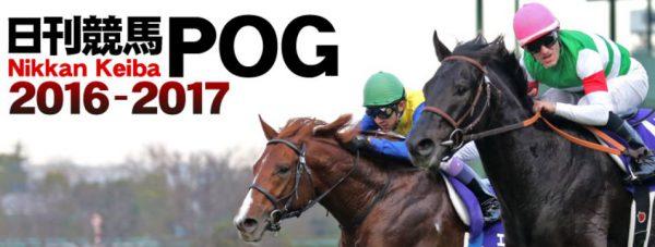 日刊競馬POG2016~2017