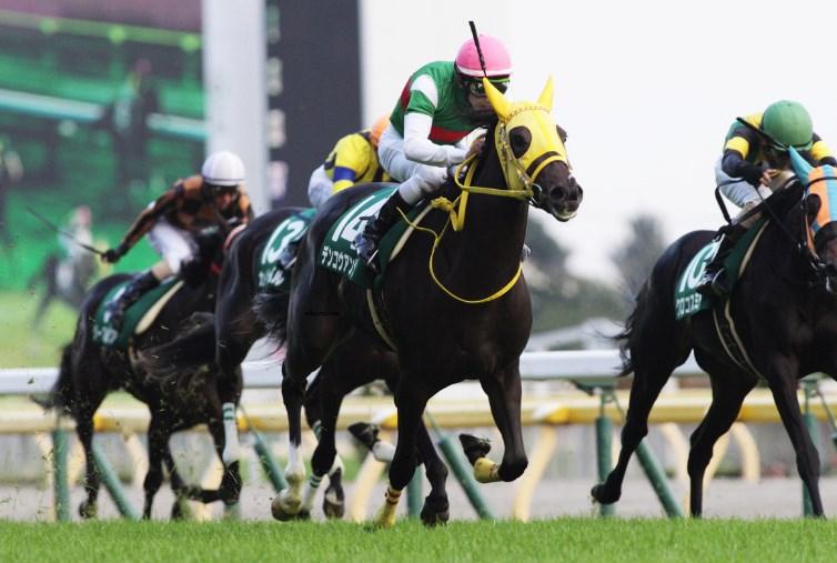 阪神牝馬S2017予想!調教チェックと重馬場適性は?