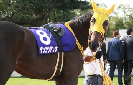 福島牝馬S2019予想!デンコウアンジュの単勝勝負。
