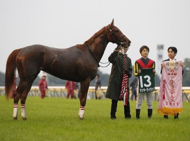 阪神JF2017調教チェック!メイチ絶好調仕上げ馬は?