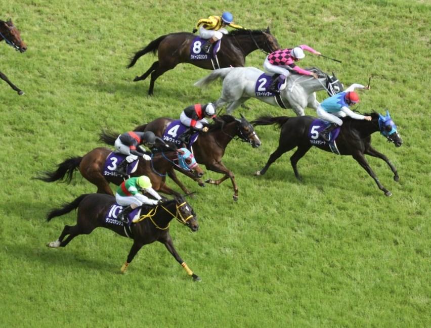 東京新聞杯2018予想!好きな馬から一途馬券で。