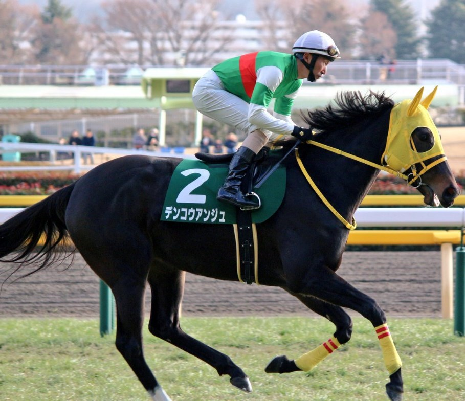 福島牝馬S2019データ分析!データ穴馬はこの馬!