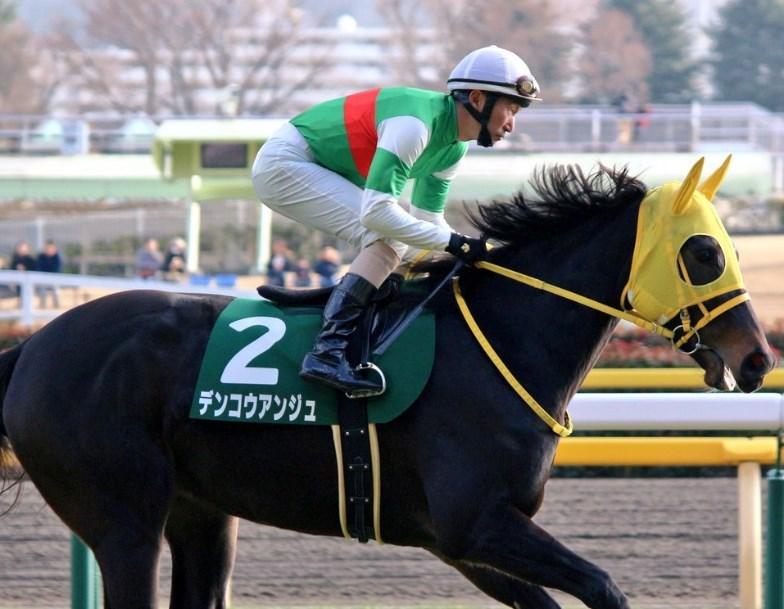 阪神牝馬S2018予想!デンコウアンジュと心中馬券!