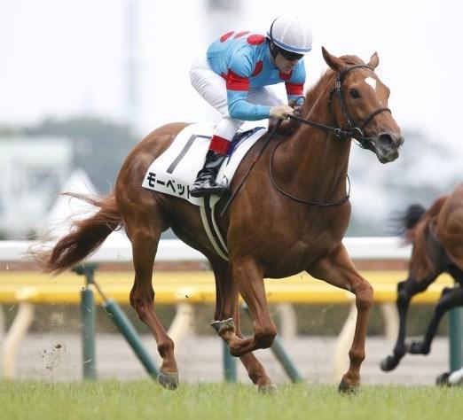 新潟2歳S2019データ分析!大穴馬はこの馬だ!