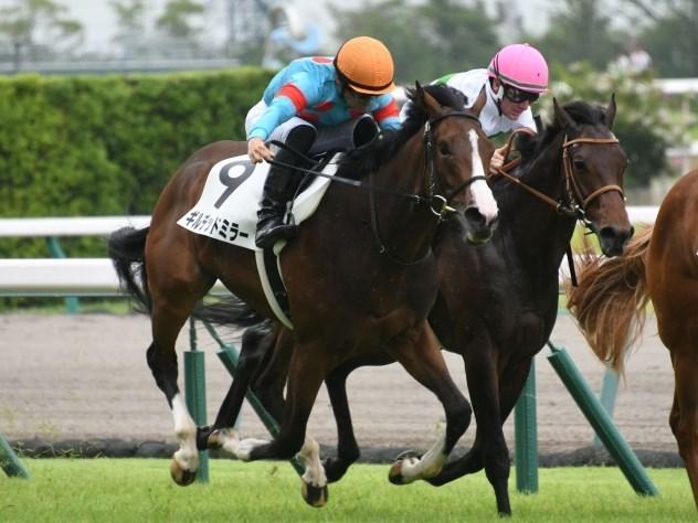 京都牝馬S2021データ分析!大穴馬を探せ!